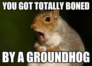 GTFO Squirrel | YOU GOT TOTALLY BONED BY A GROUNDHOG | image tagged in gtfo squirrel | made w/ Imgflip meme maker