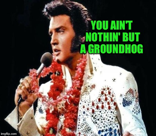 YOU AIN'T NOTHIN' BUT A GROUNDHOG | made w/ Imgflip meme maker