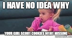 girl shrugging shoulders | I HAVE NO IDEA WHY YOUR GIRL SCOUT COOKIES WENT MISSING | image tagged in girl shrugging shoulders | made w/ Imgflip meme maker