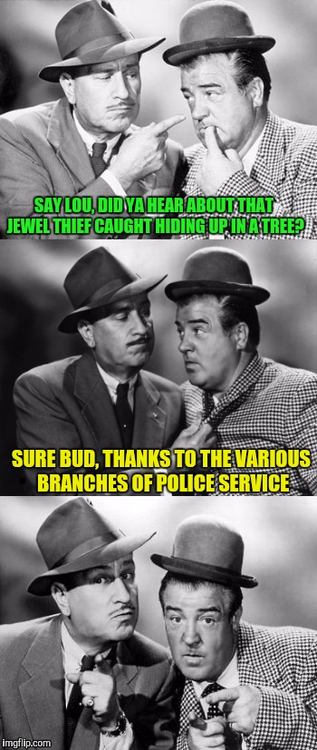 Abbott and costello crackin' wize | SAY LOU, DID YA HEAR ABOUT THAT JEWEL THIEF CAUGHT HIDING UP IN A TREE? SURE BUD, THANKS TO THE VARIOUS BRANCHES OF POLICE SERVICE | image tagged in abbott and costello crackin' wize,sewmyeyesshut,funny memes,bad pun,beep boop beep | made w/ Imgflip meme maker