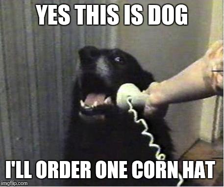 YES THIS IS DOG I'LL ORDER ONE CORN HAT | made w/ Imgflip meme maker