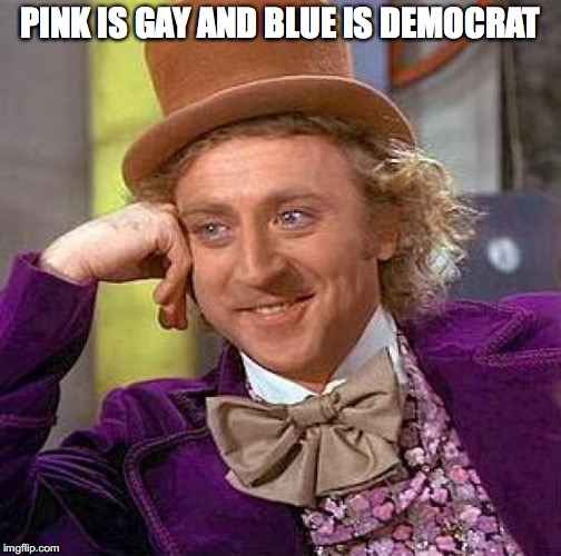 Creepy Condescending Wonka Meme | PINK IS GAY AND BLUE IS DEMOCRAT | image tagged in memes,creepy condescending wonka | made w/ Imgflip meme maker