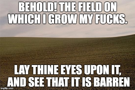 BEHOLD! THE FIELD ON WHICH I GROW MY F**KS. LAY THINE EYES UPON IT, AND SEE THAT IT IS BARREN | image tagged in zero fucks given,field of fucks | made w/ Imgflip meme maker