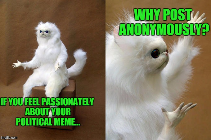 Wussy | IF YOU FEEL PASSIONATELY ABOUT YOUR POLITICAL MEME... WHY POST ANONYMOUSLY? | image tagged in memes,persian cat room guardian | made w/ Imgflip meme maker