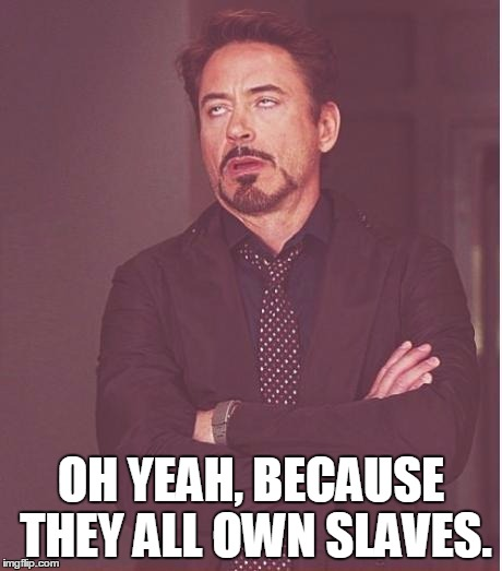 Face You Make Robert Downey Jr Meme | OH YEAH, BECAUSE THEY ALL OWN SLAVES. | image tagged in memes,face you make robert downey jr | made w/ Imgflip meme maker