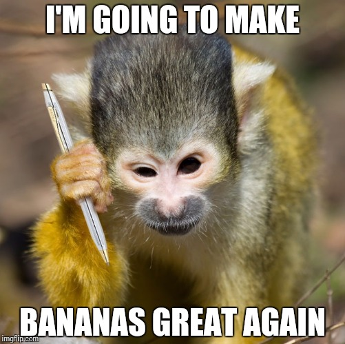 Monkey With A Pen Imgflip