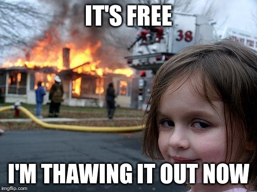 Disaster Girl Meme | IT'S FREE I'M THAWING IT OUT NOW | image tagged in memes,disaster girl | made w/ Imgflip meme maker