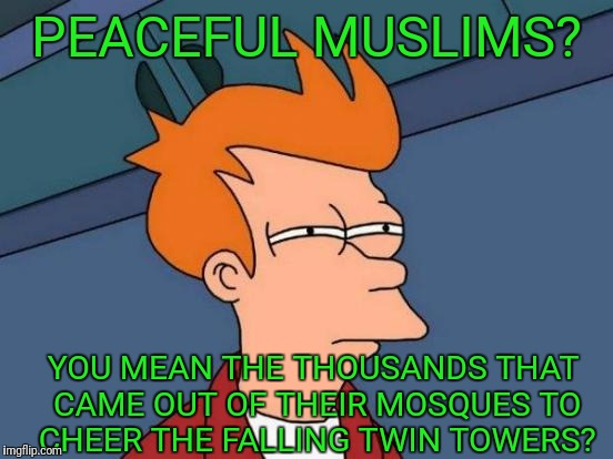 Futurama Fry Meme | PEACEFUL MUSLIMS? YOU MEAN THE THOUSANDS THAT CAME OUT OF THEIR MOSQUES TO CHEER THE FALLING TWIN TOWERS? | image tagged in memes,futurama fry | made w/ Imgflip meme maker