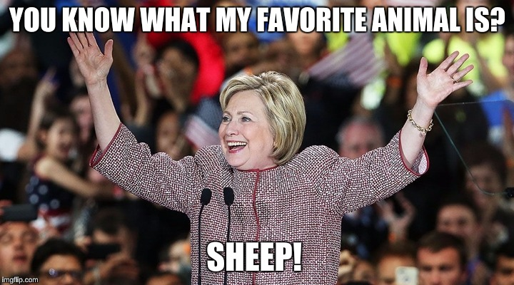 YOU KNOW WHAT MY FAVORITE ANIMAL IS? SHEEP! | made w/ Imgflip meme maker