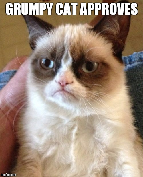 Grumpy Cat Meme | GRUMPY CAT APPROVES | image tagged in memes,grumpy cat | made w/ Imgflip meme maker