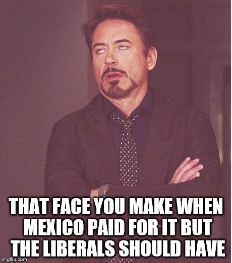 Face You Make Robert Downey Jr Meme | THAT FACE YOU MAKE WHEN MEXICO PAID FOR IT BUT THE LIBERALS SHOULD HAVE | image tagged in memes,face you make robert downey jr | made w/ Imgflip meme maker