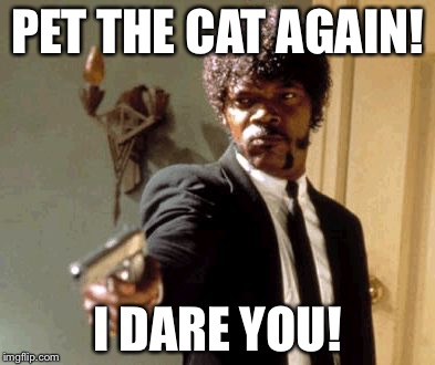 Say That Again I Dare You Meme | PET THE CAT AGAIN! I DARE YOU! | image tagged in memes,say that again i dare you | made w/ Imgflip meme maker