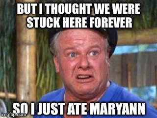 Skipper | BUT I THOUGHT WE WERE STUCK HERE FOREVER SO I JUST ATE MARYANN | image tagged in skipper | made w/ Imgflip meme maker