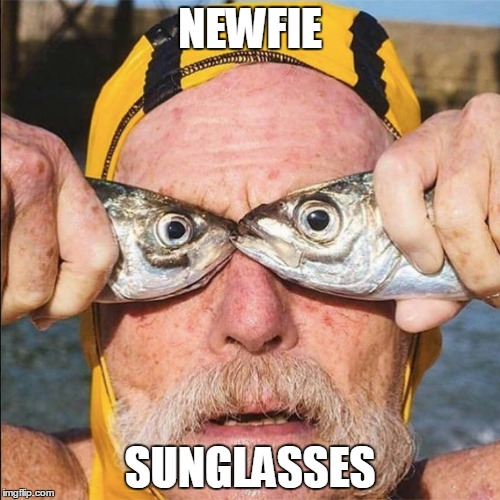NEWFIE SUNGLASSES | image tagged in newfie,newfoundland | made w/ Imgflip meme maker
