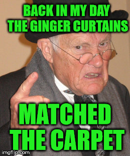 Back In My Day Meme | BACK IN MY DAY THE GINGER CURTAINS MATCHED THE CARPET | image tagged in memes,back in my day | made w/ Imgflip meme maker
