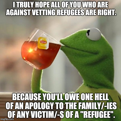 For real... | I TRULY HOPE ALL OF YOU WHO ARE AGAINST VETTING REFUGEES ARE RIGHT. BECAUSE YOU'LL OWE ONE HELL OF AN APOLOGY TO THE FAMILY/-IES OF ANY VICT | image tagged in memes,but thats none of my business,kermit the frog,refugee,terrorist | made w/ Imgflip meme maker