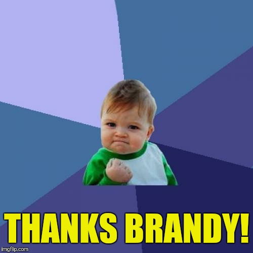 Success Kid Meme | THANKS BRANDY! | image tagged in memes,success kid | made w/ Imgflip meme maker