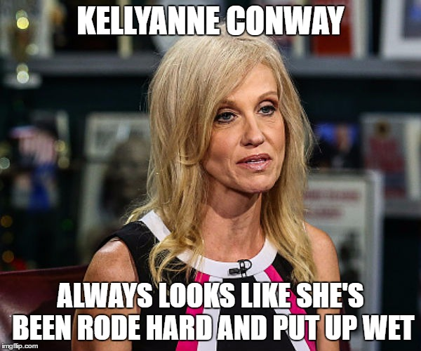 kellyanne conway so tired | KELLYANNE CONWAY ALWAYS LOOKS LIKE SHE'S BEEN RODE HARD AND PUT UP WET | image tagged in kellyanne conway | made w/ Imgflip meme maker