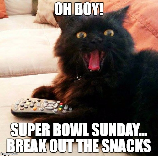OH BOY! Cat's ready for the big game, are you? |  OH BOY! SUPER BOWL SUNDAY... BREAK OUT THE SNACKS | image tagged in oh boy cat,memes,super bowl 51,football,game day,super bowl | made w/ Imgflip meme maker