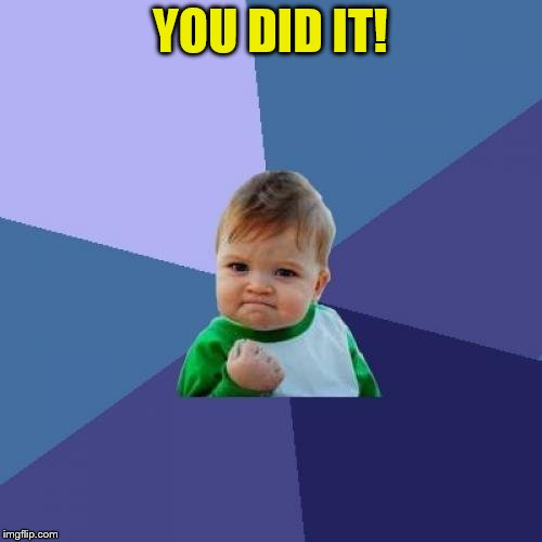 Success Kid Meme | YOU DID IT! | image tagged in memes,success kid | made w/ Imgflip meme maker