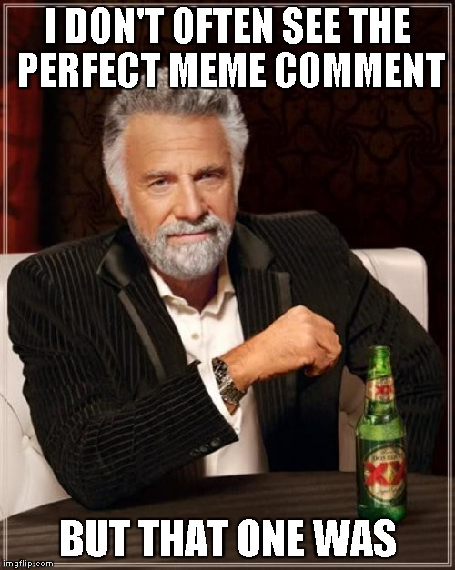 The Most Interesting Man In The World Meme | I DON'T OFTEN SEE THE PERFECT MEME COMMENT BUT THAT ONE WAS | image tagged in memes,the most interesting man in the world | made w/ Imgflip meme maker