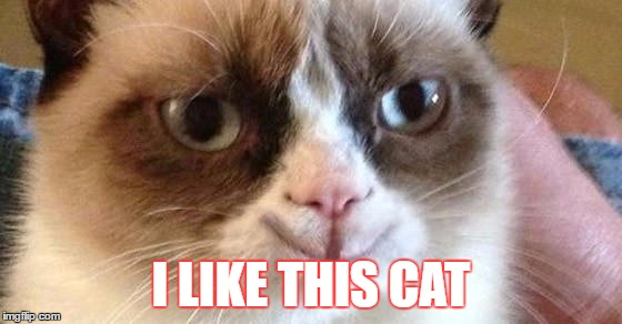 I LIKE THIS CAT | made w/ Imgflip meme maker