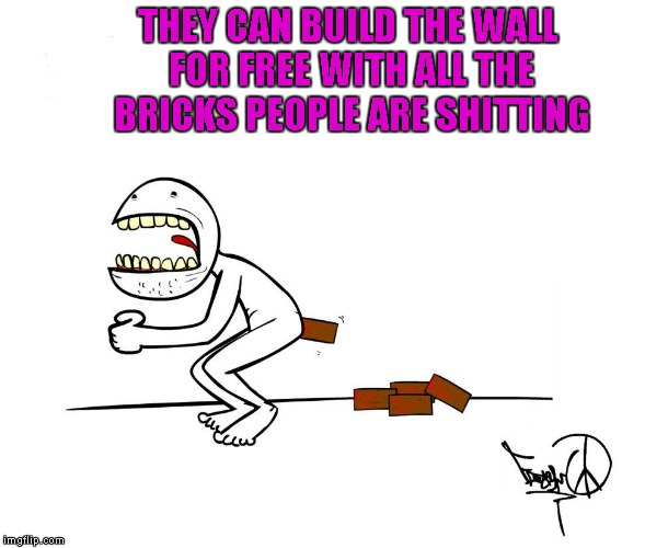 THEY CAN BUILD THE WALL FOR FREE WITH ALL THE BRICKS PEOPLE ARE SHITTING | made w/ Imgflip meme maker