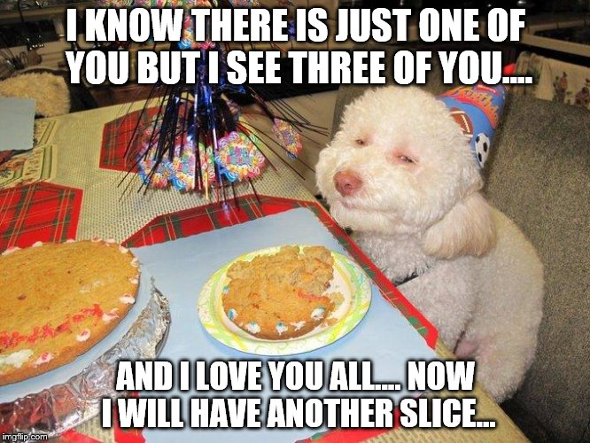 Party | I KNOW THERE IS JUST ONE OF YOU BUT I SEE THREE OF YOU.... AND I LOVE YOU ALL.... NOW I WILL HAVE ANOTHER SLICE... | image tagged in drunk doggy | made w/ Imgflip meme maker
