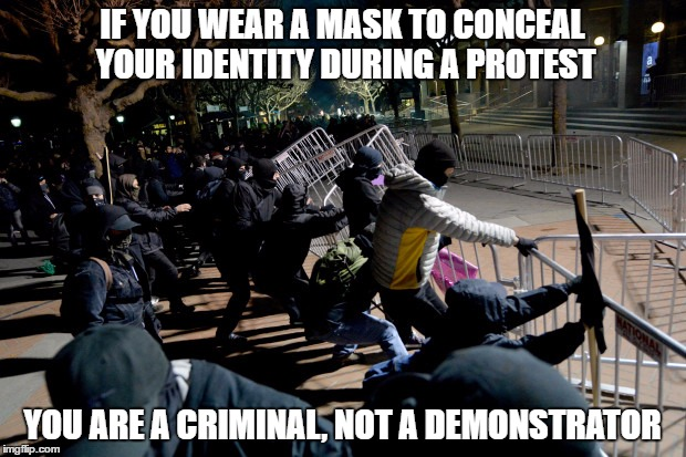 Criminals | IF YOU WEAR A MASK TO CONCEAL YOUR IDENTITY DURING A PROTEST YOU ARE A CRIMINAL, NOT A DEMONSTRATOR | image tagged in protesters,demonstration,thugs | made w/ Imgflip meme maker