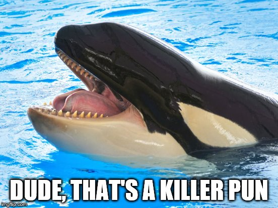DUDE, THAT'S A KILLER PUN | made w/ Imgflip meme maker