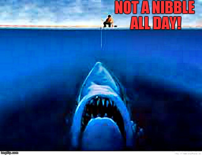 NOT A NIBBLE ALL DAY! | image tagged in fishing | made w/ Imgflip meme maker