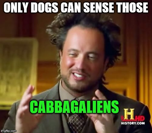 Ancient Aliens Meme | ONLY DOGS CAN SENSE THOSE CABBAGALIENS | image tagged in memes,ancient aliens | made w/ Imgflip meme maker