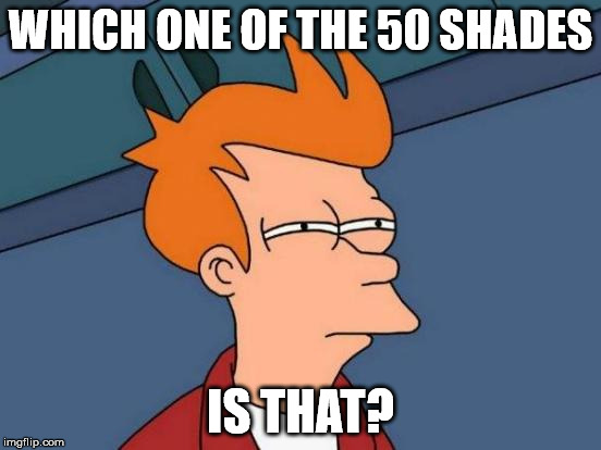 Futurama Fry Meme | WHICH ONE OF THE 50 SHADES IS THAT? | image tagged in memes,futurama fry | made w/ Imgflip meme maker