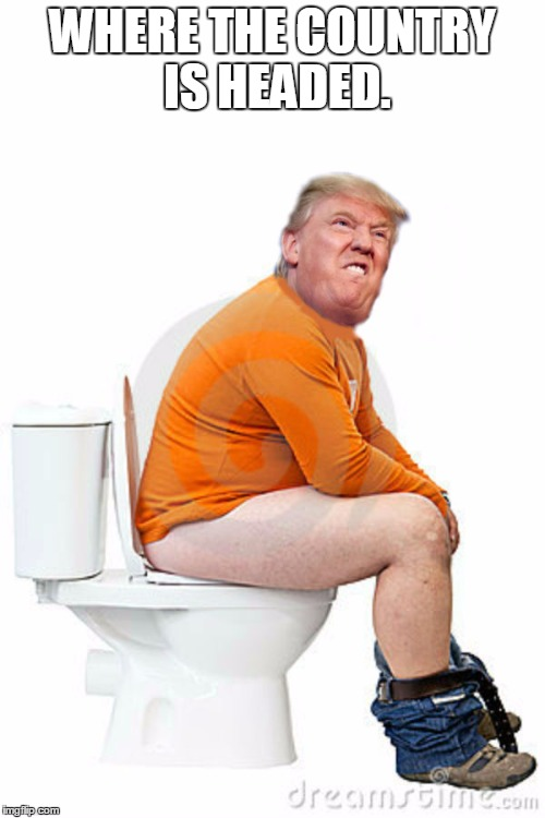TRUMP SHITTING | WHERE THE COUNTRY IS HEADED. | image tagged in trumpshitting,countryheaded | made w/ Imgflip meme maker