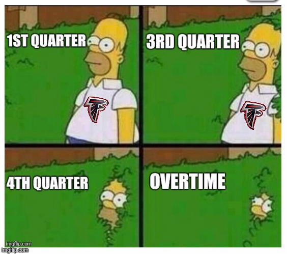Falcons Fans | image tagged in atlanta falcons,superbowl 50,new england patriots,nfl memes,nfl,tom brady | made w/ Imgflip meme maker