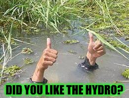 underWater | DID YOU LIKE THE HYDRO? | image tagged in underwater | made w/ Imgflip meme maker