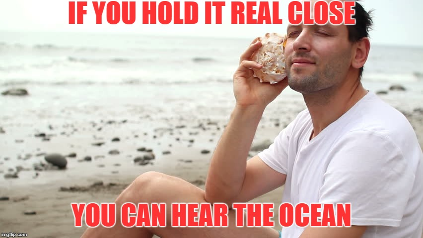 IF YOU HOLD IT REAL CLOSE YOU CAN HEAR THE OCEAN | made w/ Imgflip meme maker