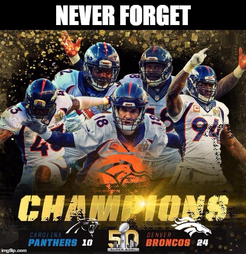 It was a great day! | NEVER FORGET | image tagged in memes,funny,broncos,super bowl,panthers,nfl | made w/ Imgflip meme maker