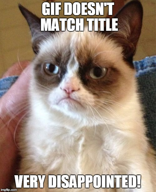 Grumpy Cat Meme | GIF DOESN'T MATCH TITLE VERY DISAPPOINTED! | image tagged in memes,grumpy cat | made w/ Imgflip meme maker