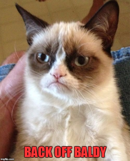 Grumpy Cat Meme | BACK OFF BALDY | image tagged in memes,grumpy cat | made w/ Imgflip meme maker