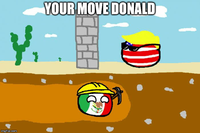 Check, your move Donald | YOUR MOVE DONALD | image tagged in mexico,donald trump,wall,tunnel | made w/ Imgflip meme maker