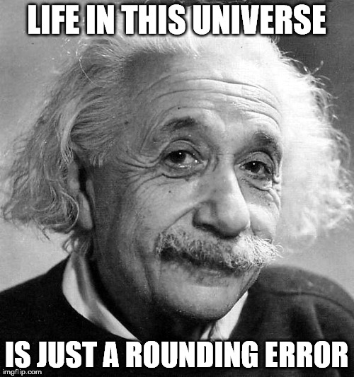 LIFE IN THIS UNIVERSE IS JUST A ROUNDING ERROR | made w/ Imgflip meme maker
