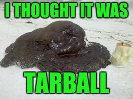 I THOUGHT IT WAS TARBALL | made w/ Imgflip meme maker