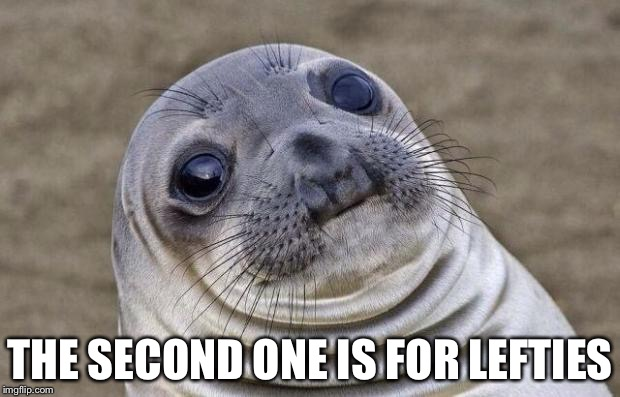Awkward Moment Sealion Meme | THE SECOND ONE IS FOR LEFTIES | image tagged in memes,awkward moment sealion | made w/ Imgflip meme maker