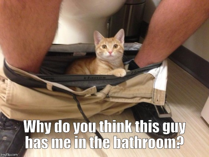 23-Funn...700.jpg | Why do you think this guy has me in the bathroom? | image tagged in 23-funn700jpg | made w/ Imgflip meme maker