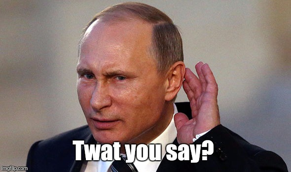 Putin put...955.jpg | Twat you say? | image tagged in putin put955jpg | made w/ Imgflip meme maker