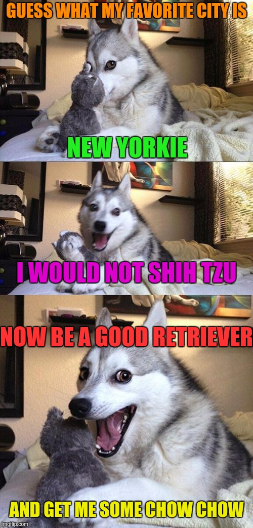 Bad Pun Dog Meme | GUESS WHAT MY FAVORITE CITY IS NEW YORKIE I WOULD NOT SHIH TZU NOW BE A GOOD RETRIEVER AND GET ME SOME CHOW CHOW | image tagged in memes,bad pun dog | made w/ Imgflip meme maker