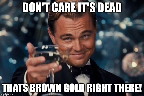 Leonardo Dicaprio Cheers Meme | DON'T CARE IT'S DEAD THATS BROWN GOLD RIGHT THERE! | image tagged in memes,leonardo dicaprio cheers | made w/ Imgflip meme maker