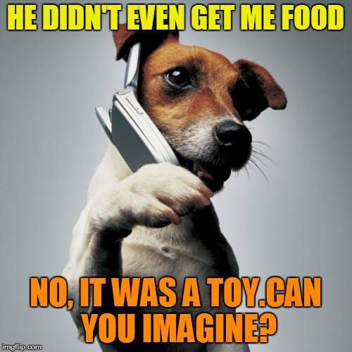 HE DIDN'T EVEN GET ME FOOD NO, IT WAS A TOY.CAN YOU IMAGINE? | made w/ Imgflip meme maker