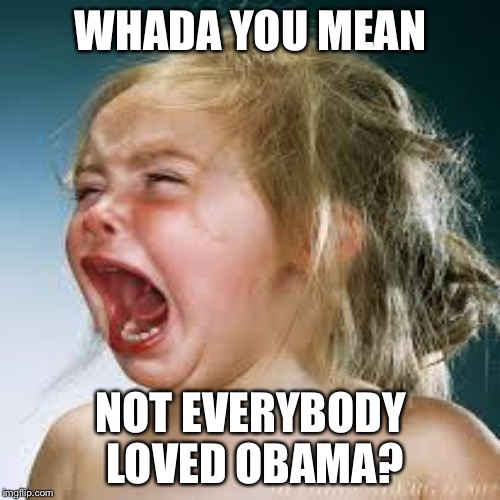 WHADA YOU MEAN NOT EVERYBODY LOVED OBAMA? | made w/ Imgflip meme maker